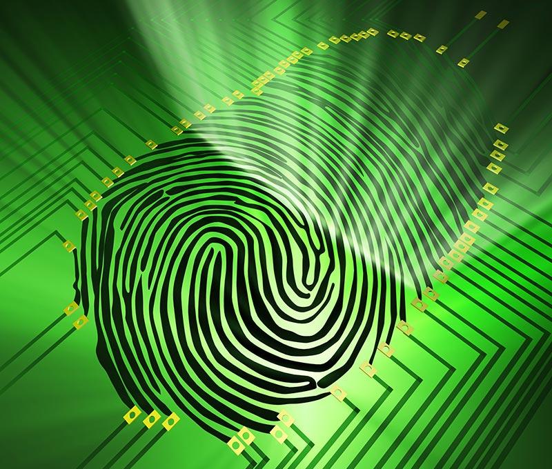 A certidão de antecedentes criminais sendo solicitada pela internet.